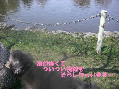 20090504.jpg