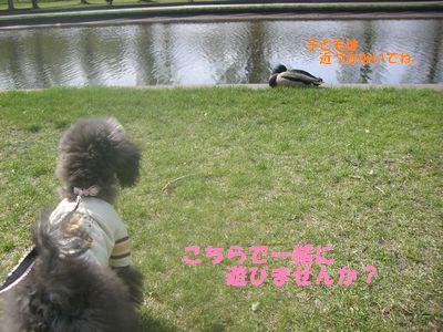 200905111.jpg