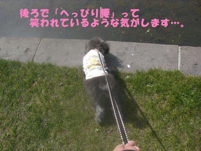 200905112.jpg