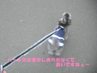200906151.jpg