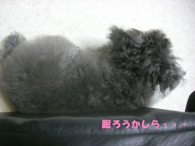 200906171.jpg