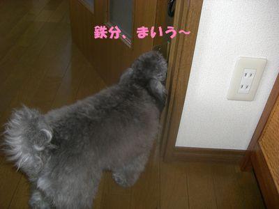 20090619.jpg