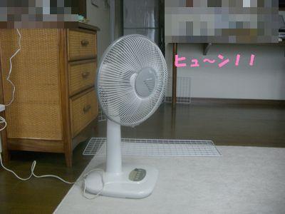 200907132.jpg