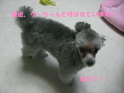 200907221.jpg