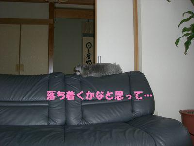 200911302.jpg