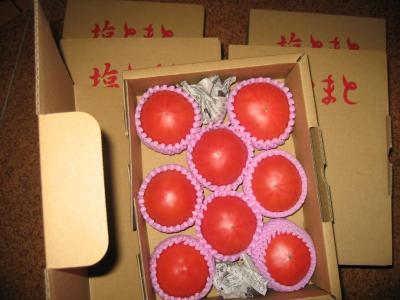 sio-tomato.jpg