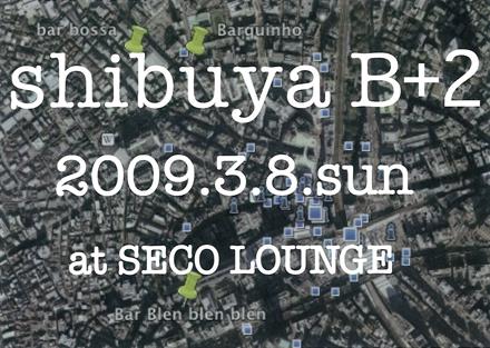 shibuyab2.jpg