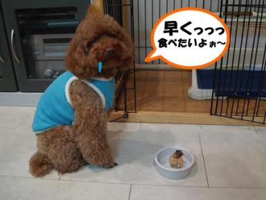 Three dog backeryのケーキ