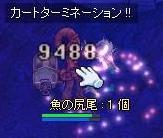 20060625130321.jpg