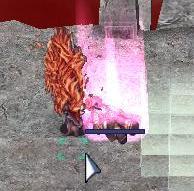 20061022020244.jpg