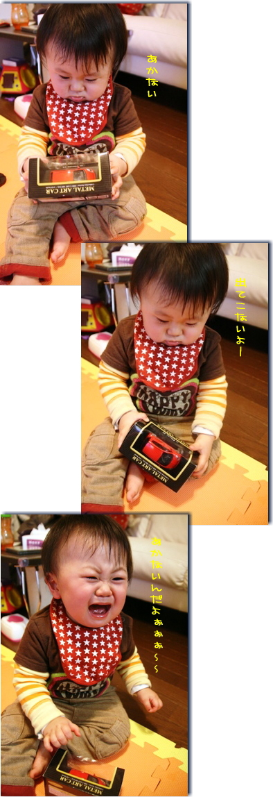 IMG_1358-2.jpg