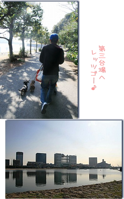 IMG_1368-2.jpg