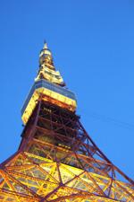 tokyoaotower.jpg