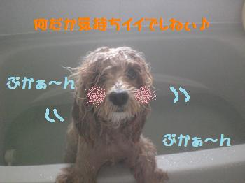 入浴シーン1