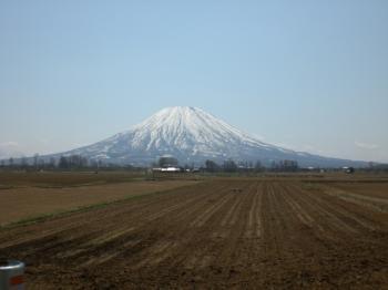 THE羊蹄山