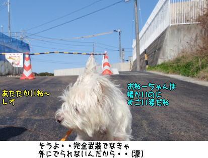 image210310.jpg