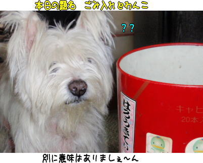 image210312.jpg