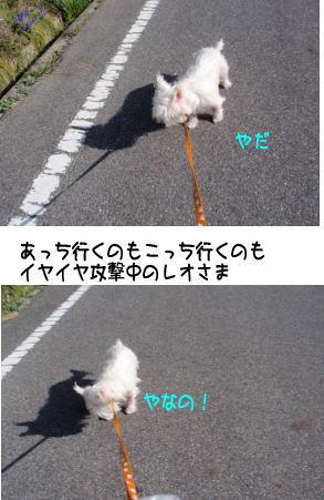 image210315.jpg