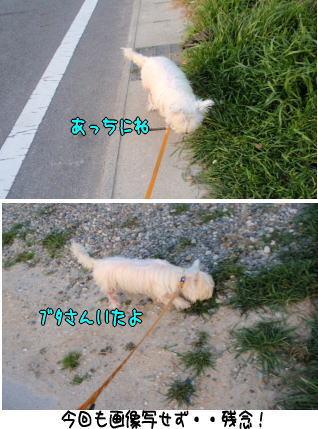 image210318.jpg