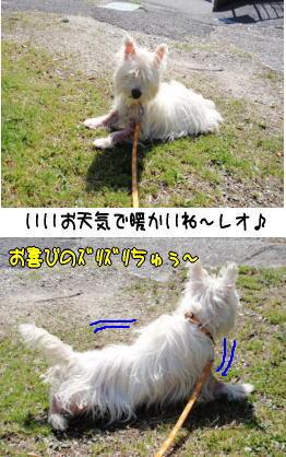 image210320.jpg