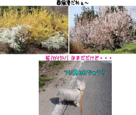 image210321.jpg