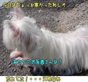 image210323.jpg