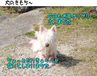 image210324.jpg