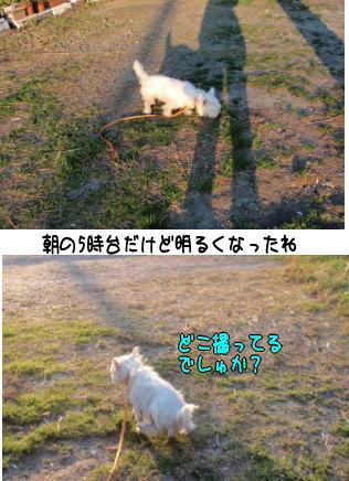 image210326.jpg