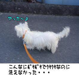 image210329.jpg