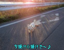 image210404.jpg