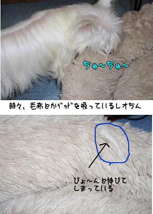 image210408.jpg