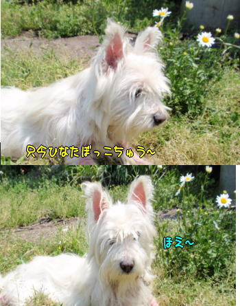 image210429.jpg