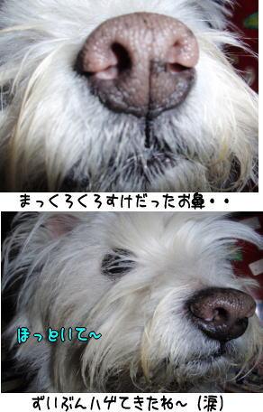image210430.jpg