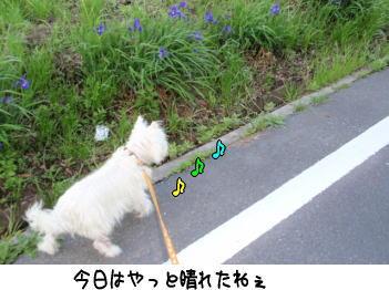 image210508.jpg