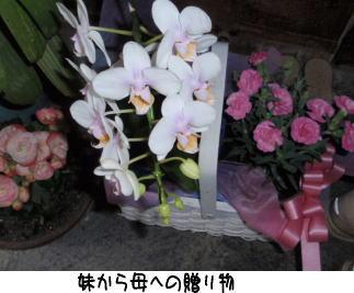 image210512.jpg