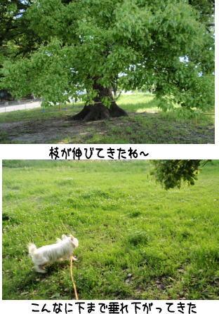 image210513.jpg