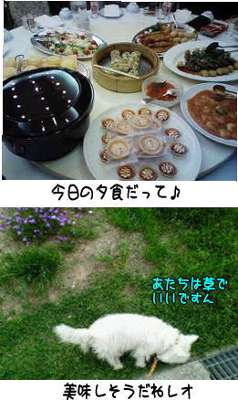 image210522.jpg