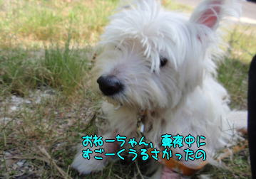 image210531.jpg