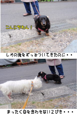 image210603.jpg