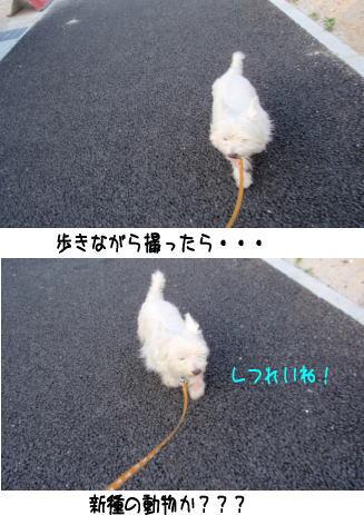 image210615.jpg