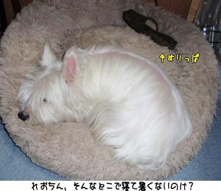 image210616.jpg