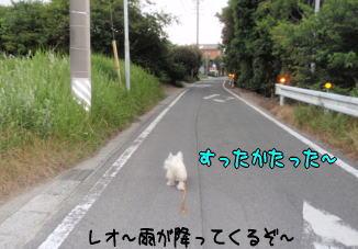 image210619.jpg