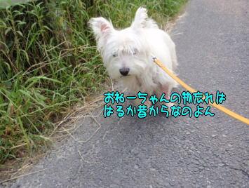image210626.jpg