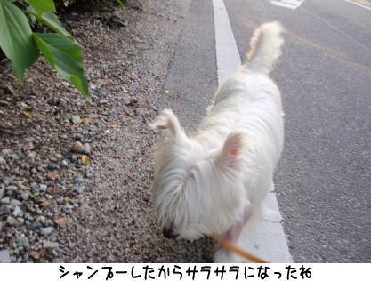 image210704.jpg