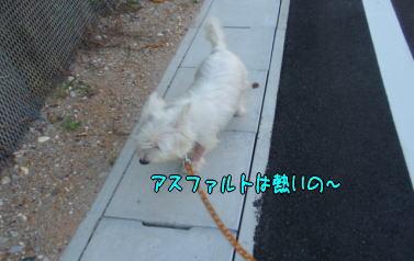 image210715.jpg