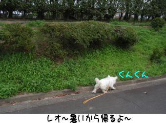 image210716.jpg