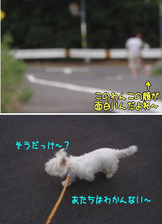 image210719.jpg