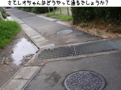 image210721a.jpg