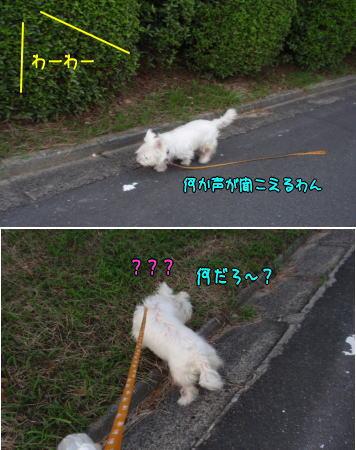 image210723.jpg