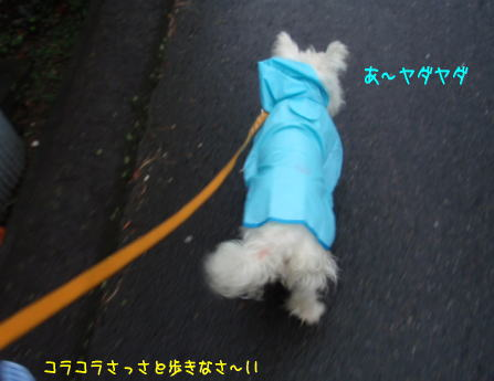 image210727.jpg